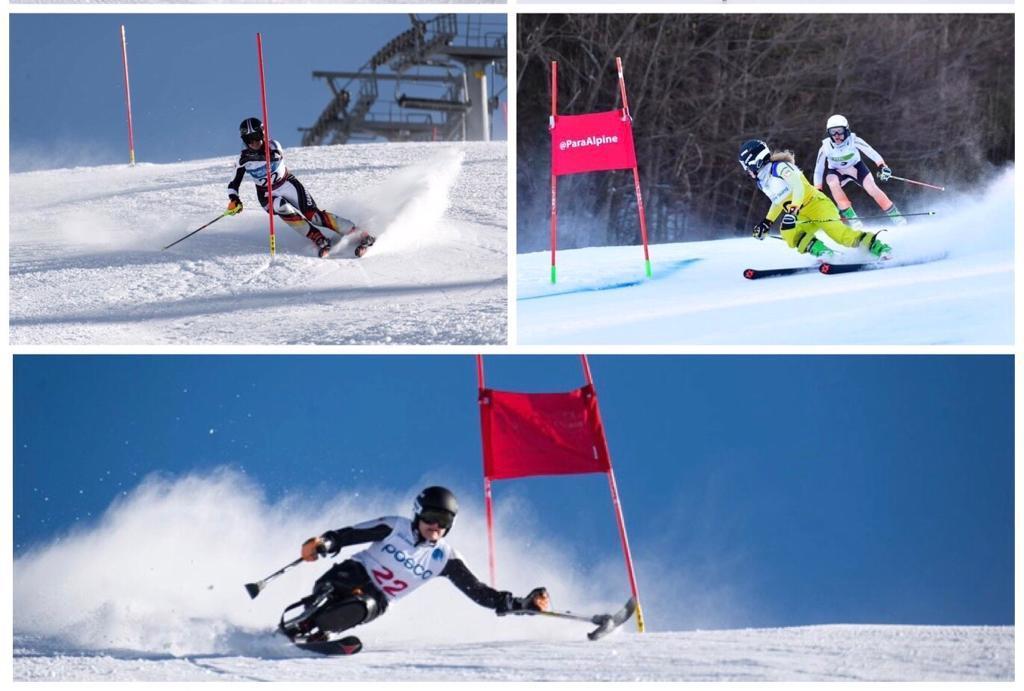 Bildercollage von Ski Alpin Rennläüfer*Innen, bestehend aus drei Motiven. 1. Stehend (Amputation); 2. Blinde mit Guide; 3. Sitzend (Monoski)